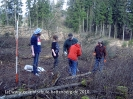 Waldprojekt Berghofen_16