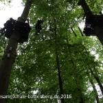 Kletterwald H7, R7a, R7b_2