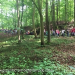 Limburg Klassen 5 Gruppe 1_46