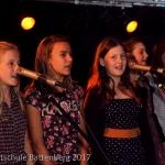 Sommerkonzert 2017_32